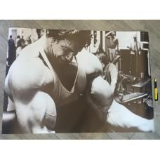 Плакат Арнольд Шварценеггер 2